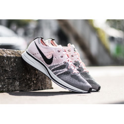 "NIKE : FLYKNIT TRAINER ""SUNSET TINT"""