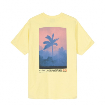 STÜSSY : FIRE PALM TEE