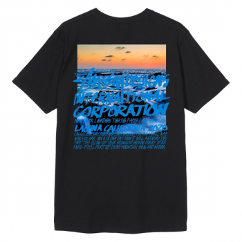STÜSSY : CLEAR DAY TEE